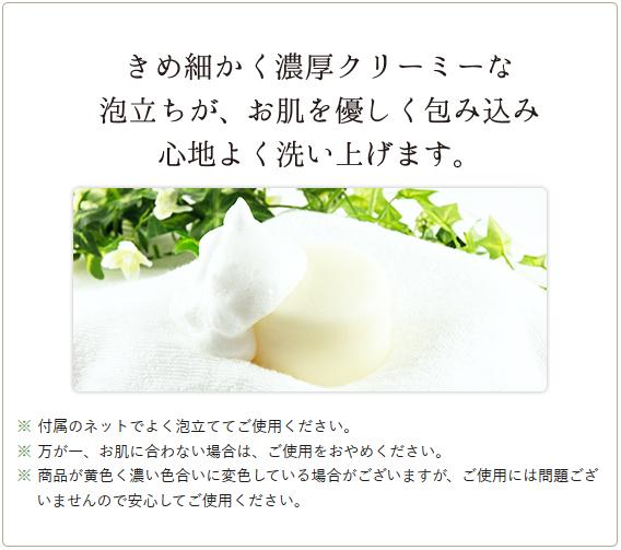 きめこまかく濃厚クリーミーな泡立ちがお肌を優しく包み込み心地よく洗い上げます